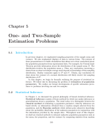 One- and Two-Sample Estimation Problems - E-Books