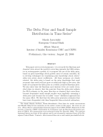 The Delta Prior and Small Sample Distribution in Time Series