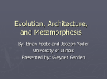 Evolution, Architecture, and Metamorphosis