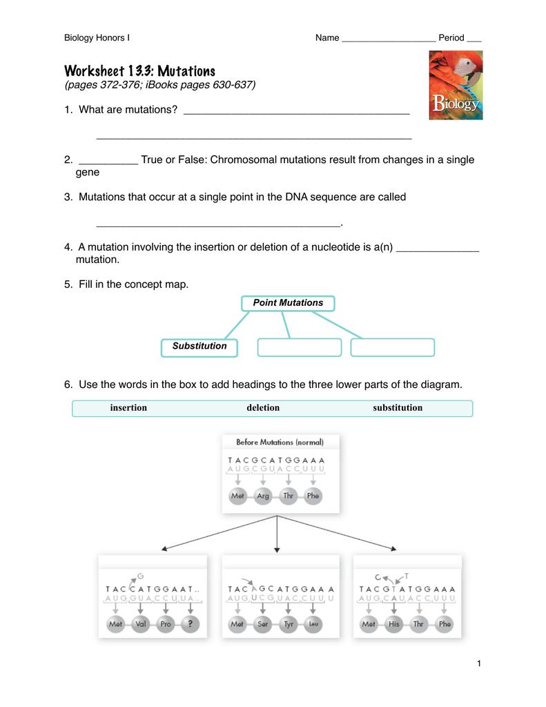 Worksheet 13 3