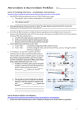 Microevolution & Macroevolution Worksheet