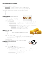 Macromolecules Worksheet - HighMark Charter School