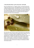 Bay Leaf  Best Benefits