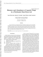 Biomass and Abundance of Aquatic Fungi in a ... - ResearchGate