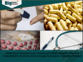 Global Genetic Diseases, Cancer, Forensic and Paternity Molecular Diagnostic Testing Markets- Country Forecasts, Emerging Technologies, Competitive Strategies