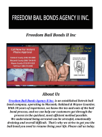 Freedom Bail Bonds II Inc: Bail Bonds Detroit Michigan