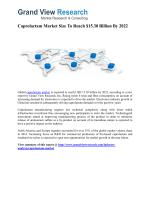 Caprolactam Market Forecast Report to 2022