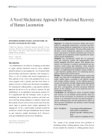 A Novel Mechatronic Approach for Functional Recovery of Human Locomotion