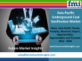 Underground Coal Gasification Market Value Share, Analysis and Segments 2014 - 2020 by Future Market Insights