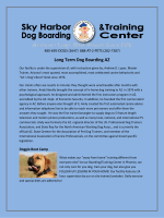 Long Term Dog Boarding AZ