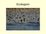 Shallow Ecology