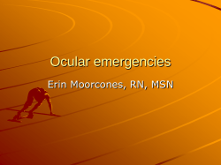 16 - Ocular Emergencies