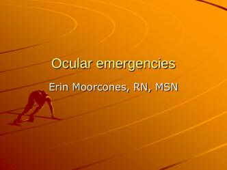 16 - Ocular Emergencies
