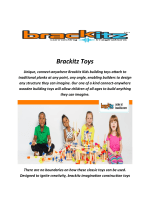 Brackitz Educational Construction Toys