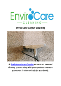 Minneapolis EnviroCare Carpet Cleaning Services