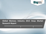Global Biomass Industry 2015 Deep Market Research Report