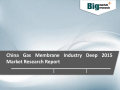 2015 China Gas Membrane Industry  - Market Size, Share, Growth & Analysis