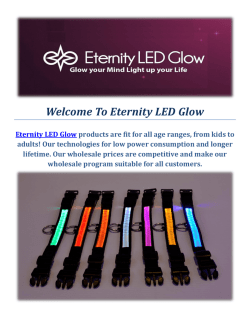 Led Dog Collars by Eternity LED Glow