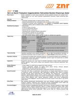 ZNR™ P 600 Sırlı ve Nemli Yüzeylere Uygulanabilen Solventsiz