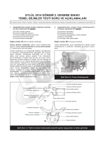 eylül 2014 dönemi 2. deneme sınavı temel bilimler testi soru ve