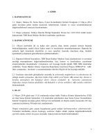 Soma Maden Faciası Raporu - İnsan Hakları