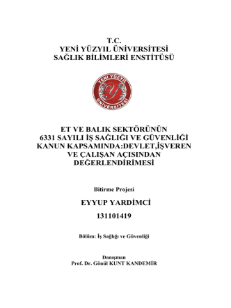 bitirme ödevi - İstanbul Yeni Yüzyıl Üniversitesi