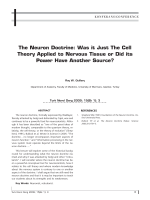 The Neuron Doctrine: Was it Just The Cell Theory