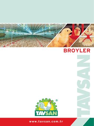BROYLER - Tavsan Tavukçuluk Ekipman San. ve Tic. A.Ş.