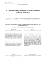 A Chemical Erythematous Macule of the Buccal Mucosa Bukkal