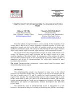 """""""Angel Investors"""" in Entrepreneurship: An Assessment on Turkey"""