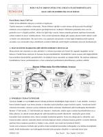 burun estetiği ameliyatı / rinoplasti / septorinoplasti