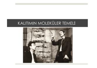 16. BÖLÜM - Prof. Dr. Bektaş TEPE