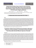 Evaluation of Real-Time RT-PCR Assay for Routine Laboratory