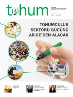 Tohum - türkted