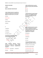 SMMM Dr. Murat DEMET-Finansal Muhasebe Yaprak Test Serisi-1