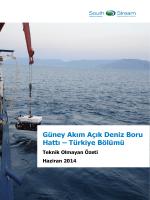 Güney Akım Açık Deniz Boru Hattı – Türkiye Bölümü