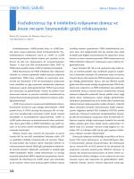 Fosfodiesteraz tip 4 inhibitörü rolipramın domuz ve