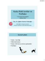 Kuduz riskli ısırıklar ve profilaksi