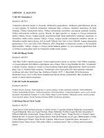 Tarih Bölümü Ders İçerikleri
