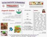 İYTE Gıda Bülten-2 - gıda mühendisliği