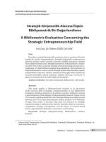 Stratejik Girişimcilik Alanına İlişkin Bibliyometrik Bir Değerlendirme