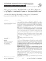 Analysing resistance of different Tuta absoluta