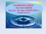ruminantlarda suyun önemi-29 ocak 2014