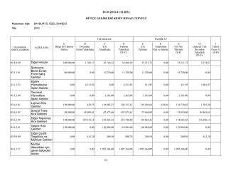 2013 mali yili gelir kesin hesabi