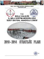 2010-2014 İzzet Baysal Anadolu Lisesi Strateji Planlama Analiz