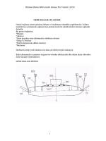 Dizman DenizcilikVe Gemi Sanayi Dıs Ticaret Ltd.Sti 1 GEMI
