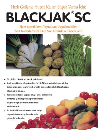 blackjak sc