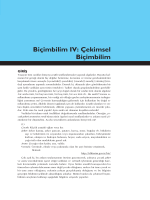 Biçimbilim IV: Çekimsel Biçimbilim