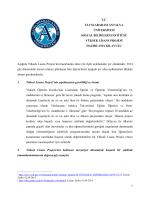 AIU MBA Program_Bitirme Projesi Klavuzu