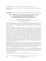 Tıbbi Önemi Olan ve Gıda Olarak Kullanılan Arum italicum(Yılan